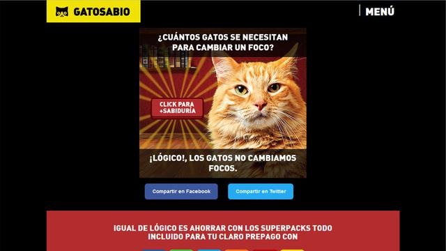 App social sabiduria gatosabio 03