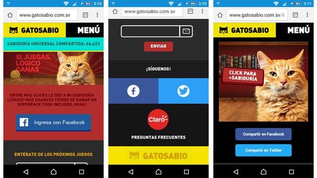 App social sabiduria gatosabio 04