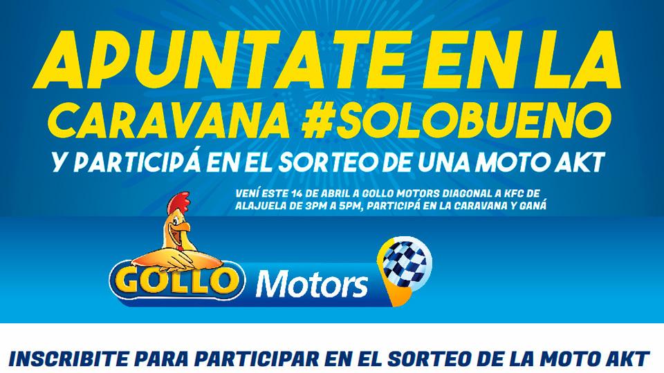 portafolio desarrollo-digital-Gollo Motors